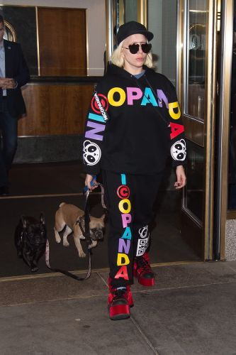 Lady Gaga's Dogs Recovered