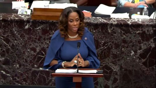 Rep. Stacey Plaskett Quotes Run the Jewels, GZA at Trump Impeachment Trial