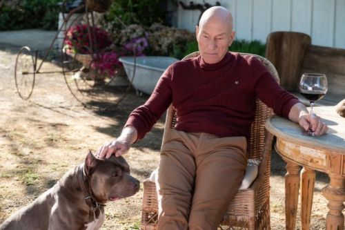 TV Review: Star Trek: Picard Needs More Than Patrick Stewart To Truly Engage