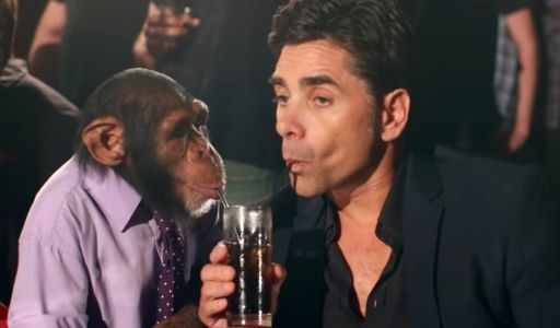 PETA Slams The Offspring For Chimpanzee Strip Club Video With John Stamos